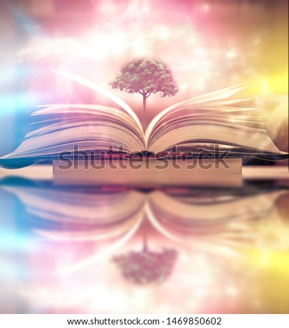 The concept of education by planting a tree of knowledge in the opening of an old book in the library and the magical magic of light that flies to the destination of success. Beautiful background #1469850602