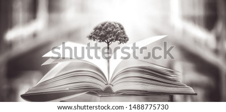 The concept of education by planting a tree of knowledge in the opening of an old book in the library and the magical magic of light that flies to the destination of success. Beautiful background #1488775730
