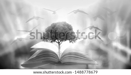 The concept of education by planting a tree of knowledge in the opening of an old book in the library and the magical magic of light that flies to the destination of success. Beautiful background #1488778679