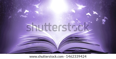 The concept of education of knowledge in the opening of the old book in the library, along with the magical magic that flew out of the book to the goal of success in the classroom. #1462339424