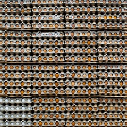 The concept of human resource management, talent management, and the definition of high-potential personnel, illustrated with an image of egg boxes where a particular group is distinguished by color.