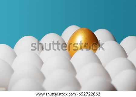The concept of individuality, exclusivity, better choice. One golden egg among white eggs on blue background.