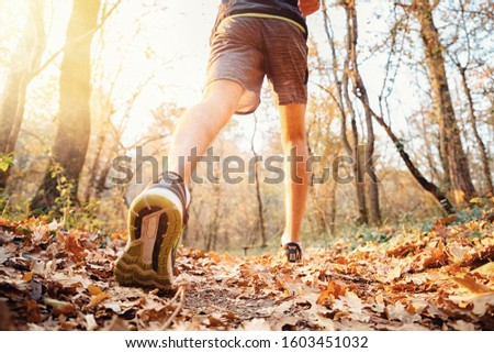The concept of sport and healthy lifestyle. A man in sports clothes is Jogging in the autumn forest or Park. Bottom view, feet in sneakers closeup. Light