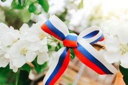 The concept of the Day of Russia. a bow made of a ribbon painted in the colors of the Russian flag on a branch of a flowering tree on a sunny warm day.