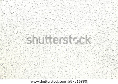 The concept of water drops on a white background