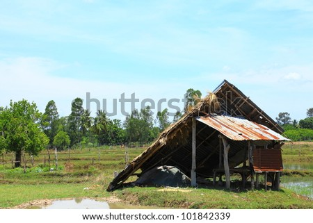 The cottage was destroyed in the storm the field.