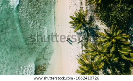 The couple walks on the beach between the ocean and palm trees