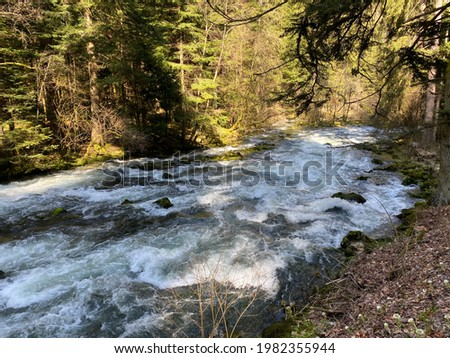 The course of the river Orbe between the cave or spring and the settlement of Vallorbe (der Fluss Orbe or le fleuve de l'Orbe), Vallorbe - Canton of Vaud, Switzerland (Kanton Waadt, Schweiz)