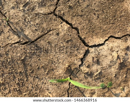 The cracked ground, crack of dirt, crack of soil #1466368916