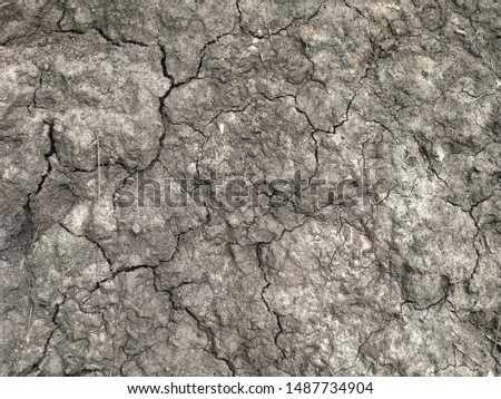 The cracked ground, Ground in drought, Soil texture and dry mud, Dry land. #1487734904