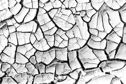 The cracks texture white and black