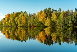 The Dal River in Sweden, in autumn colors. Vibrant colorful trees along the riverbank and the blue sky, reflecting in the calm and shiny water