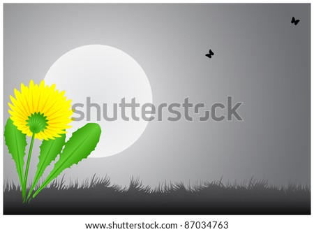 The dandelion in the grass under a full moon and a place for inscription