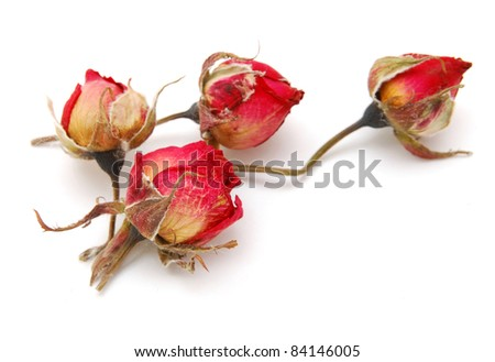 the decorating withered roses - stock photo