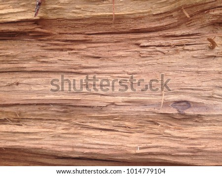 The deep brown wooden texture #1014779104