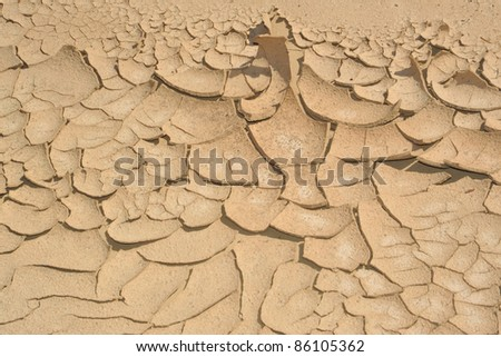 The desert floor in an abstract image peeling off the ground.