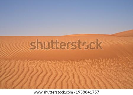 The desert in Sharjah, United Arab Emirates Zdjęcia stock ©