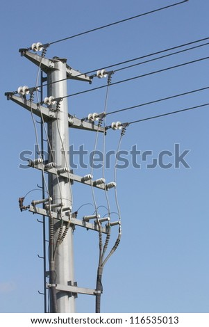 The details of transmission line assembly, which shown the details of aluminum wire and insulator installed. Birds are sitting on the wire and steel pole but did not get any hurt from electricity.