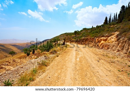 The Dirt Road In Sand Hills of Samaria, Israel