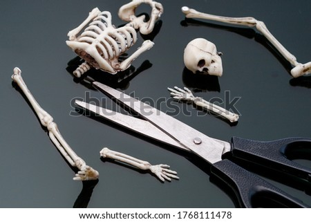 the dissected skeleton of the man in pieces is in front of the scissors. dismemberment weapon stock photo