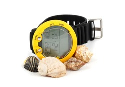 The dive decompression computer for diving with sea shells on a white background.