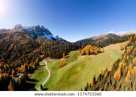 the dolomites mountain autumn landscape with colorful forest #1174753360