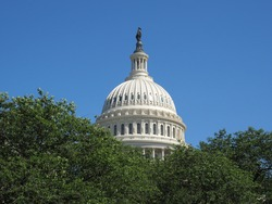 The dome of the Capitol in Washington D.C. that protrudes above the canopy.