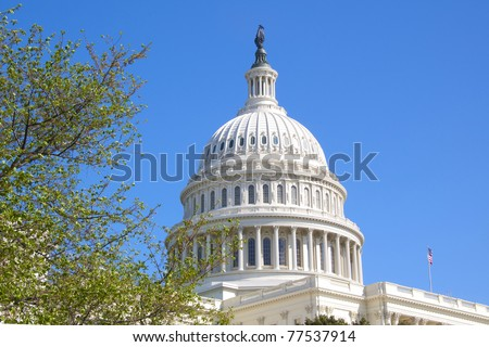 The Dome of the U.S. Capitol Against a Bright Blue Sky on a Spring Day
