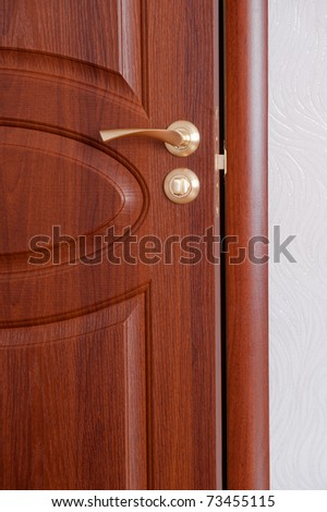 The door handle. A wooden door, brass handles.