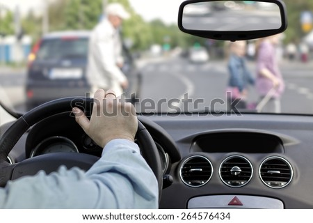 The driver and a pedestrian at a crosswalk