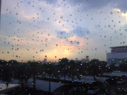 The drops of water after rain and sun are hiding.