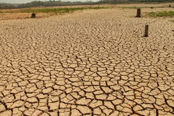 The drought land texture in Thailand. Dry cracked soil dirt or earth during drought at sunset. The global shortage of water on the planet. Global warming and greenhouse effect concept.