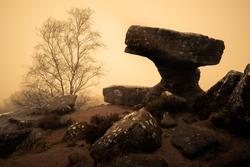 The Druid's Writing Desk at Brimham Rocks, North Yorkshire