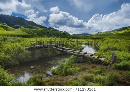 The 'Dzukou' Valley : This  valley located at the border of the states of nagaland and manipur . This valley is well known for its natural environment, seasonal flowers and flora and fauna.