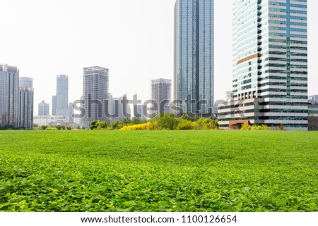 The ecological environment of the central business district #1100126654