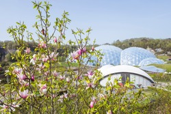 The Eden Project (Cornish: Edenva) is a popular visitor attraction in Cornwall, England, UK. Inside the two biomes are plants that are collected from many diverse climates and environments.
