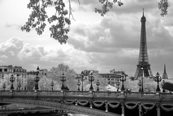 The Eiffel Tower and Alexandre III bridge in Paris, France.