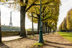 The Eiffel Tower seen between the chestnut trees planted alongside the banks of the river Seine with an old style street light in the foreground.