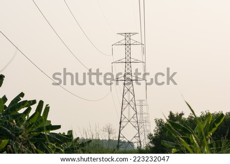 the electricity pylon isolated on white and the green bush
