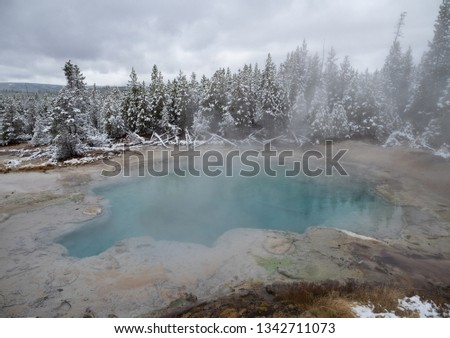 The Emerald Spring, part of the Norris Geyser Basin in Yellowstone National Park photographed in the winter with snowy evergreen trees. #1342711073