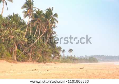The empty beach in the quiet coastal town Tangalle in Sri Lanka #1101808853