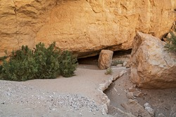 the entrance to the nekarot cave in nahal nekarot in the makhtesh ramon crater in israel is nearly hidden from trekkers by bushes and boulders