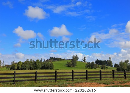 The equal grassy farmer field fenced with a low wooden fence #228282616