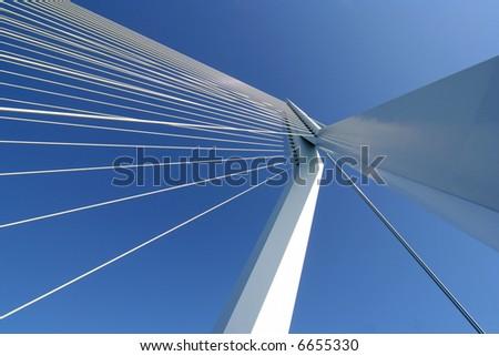 The Erasmus bridge in Rotterdam, Netherlands #6655330