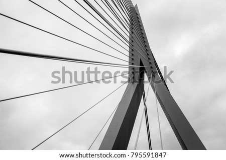 The Erasmus Bridge lines #795591847