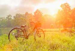 The evening sun shines on a vintage bike parked in the field, beautiful scenery, old bike with the light of the setting sun, beautiful meadow with your favorite bike. Vintage style lighting effects.