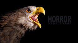 The evil eye. Awesome screaming eagle from fantasy. Picture with space for your text.