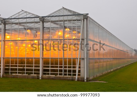 The exterior glass facade of a huge glasshouse #99977093