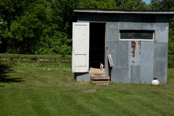 The exterior of a chicken coop with a chicken in the doorway.