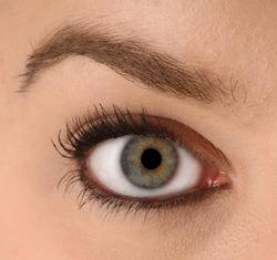 the eye of a youthful female - clean and available for editing